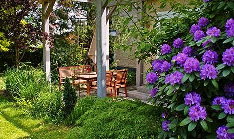 terras in tuin met paarse bloemen